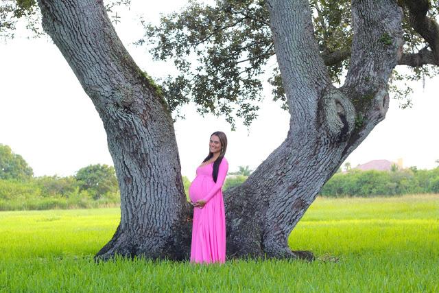 HOL Tree