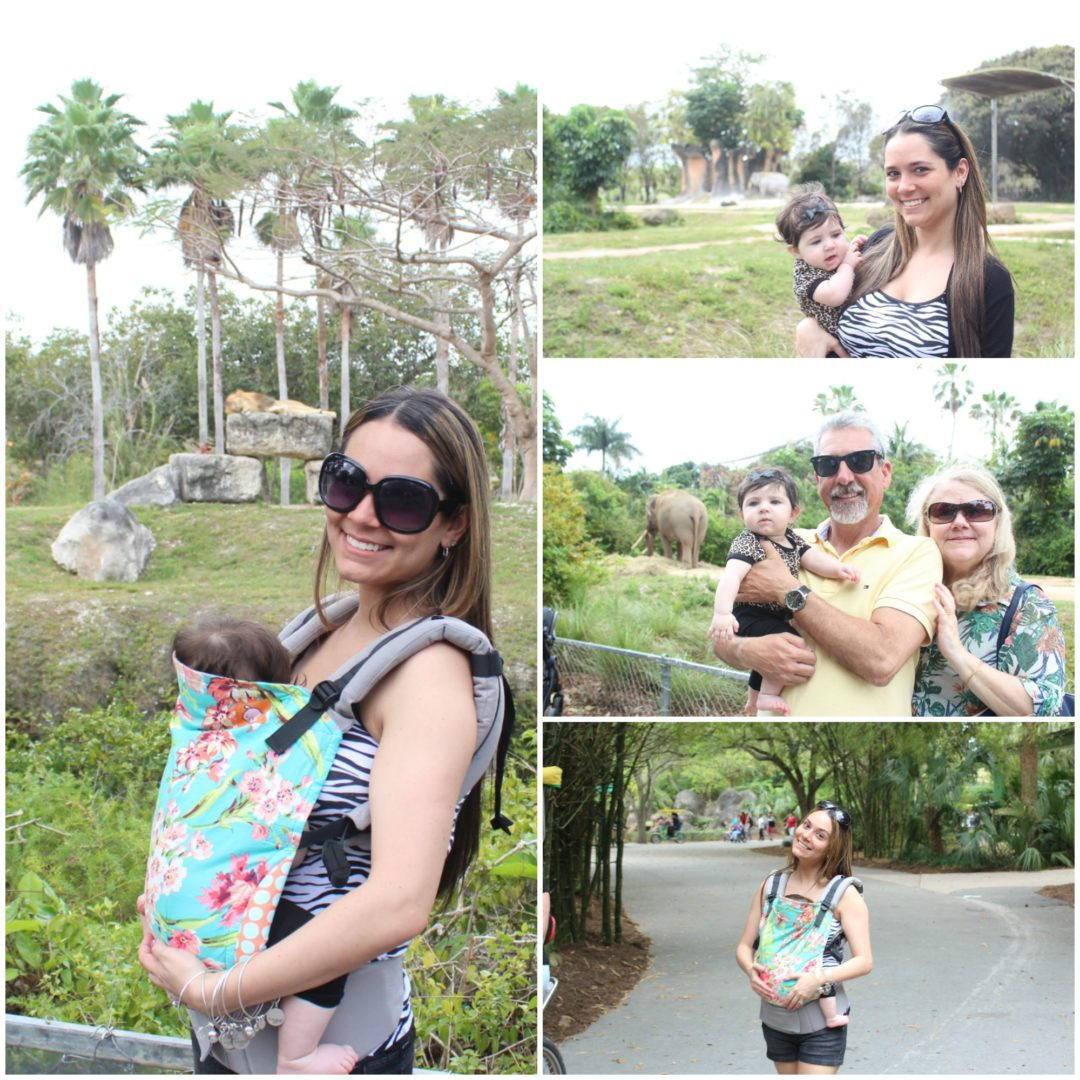 Zoo Collage2