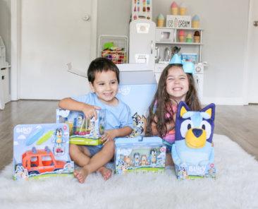 Bluey TV Show Toys (1)